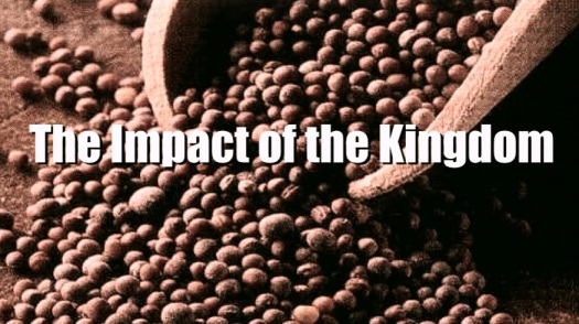Impact of Kingdom_Fotor